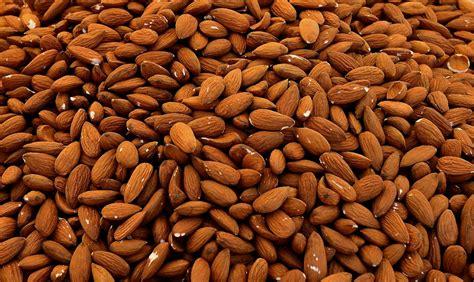 jual kacang almond harga murah bukalapak