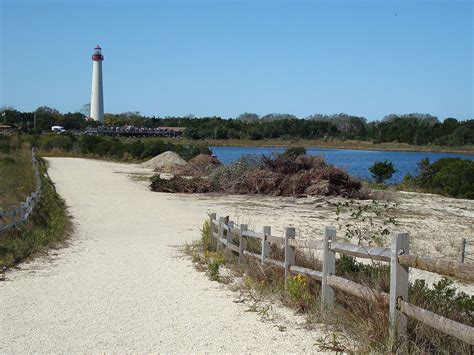 cape may new jersey lakeshore nature tours