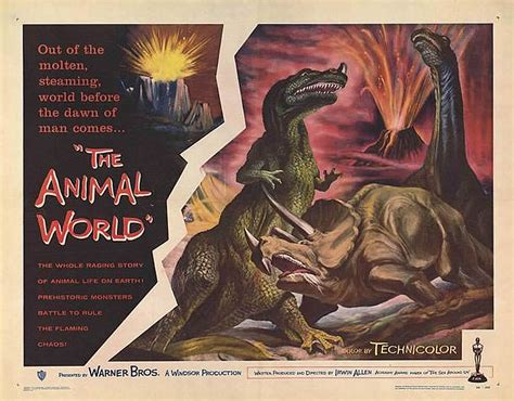 animal world  documentary  poster