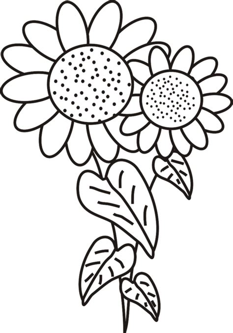 printable sunflower coloring pages coloring me