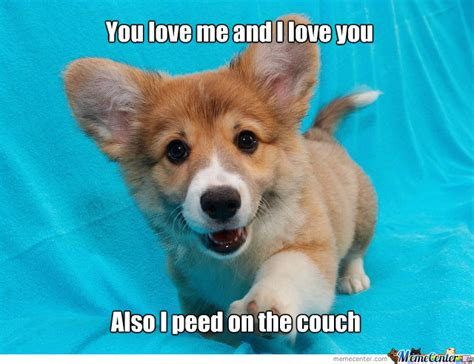 Puppy Meme - cute puppy love memes image memes at relatably com