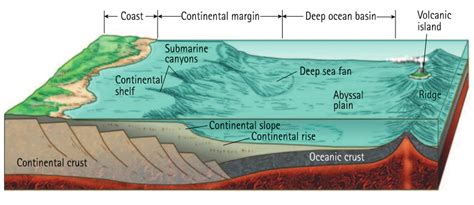 Define Basin Floor basins