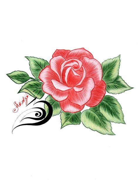 imagenes chidas rosas rosas para dibujar chidas photo sexy girls