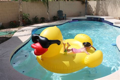 pool floats 6 pool floats for that you ll savvy sassy