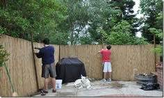 backyard x scapes 6 ft h x 16 ft l reed fencing staple gun
