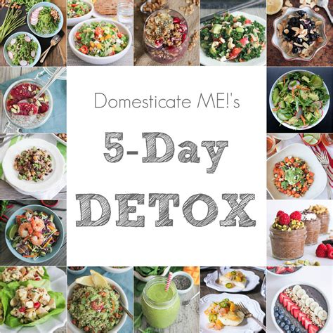 5 Day Vegan Detox by 5 Day Detox Plan Domesticate Me