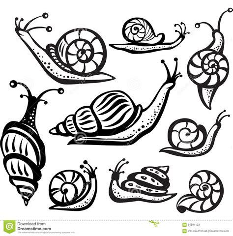 Kemeja Black Abstract White Snail set of black and white snails stock vector image 64594123