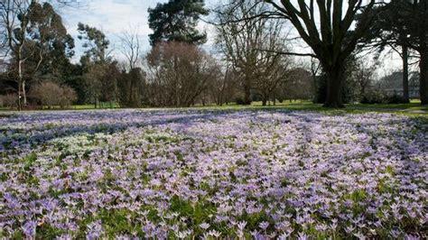 Royal Botanic Gardens Of Kew Royal Botanic Gardens Kew Garden Visitlondon