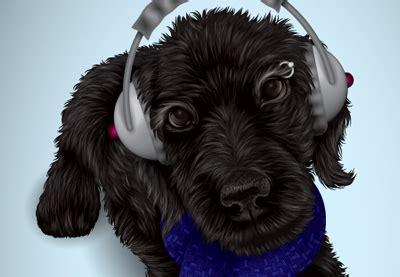 illustrator tutorial dog creating a personalized pet portrait in illustrator cs5