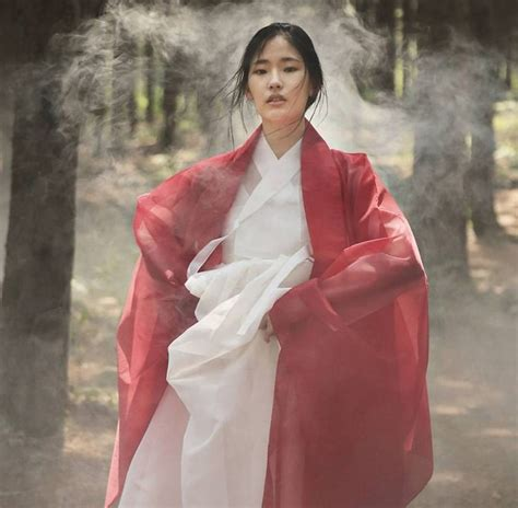 korean remple dress 9978 965 best images about east ii on buddhist