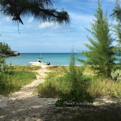 green turtle cay boat rentals sunset marine and boat rentals green turtle cay