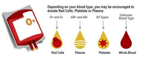 what color are platelets got platelets northern california community blood bank