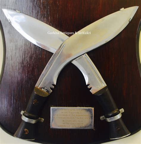 wilkinson sword kitchen knives 100 wilkinson kitchen knives the world u0027s