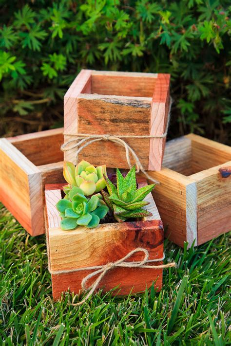 Unavailable Listing On Etsy Succulent Planter Box