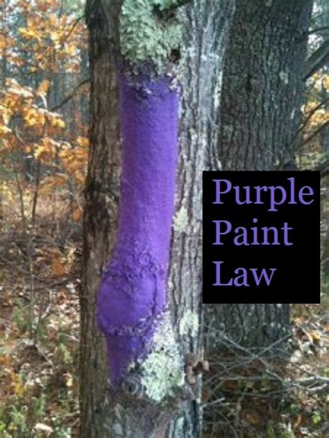 Purple Paint Law | purple paint law the prepared page