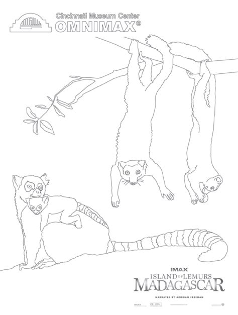 madagascar island coloring page island of lemurs madagascar kid critic video