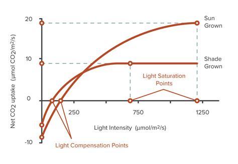 Light Compensation Point led lighting photosynthesis guide fluence bioengineering