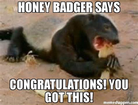 Honey Meme - baby honey badger memes related keywords baby honey