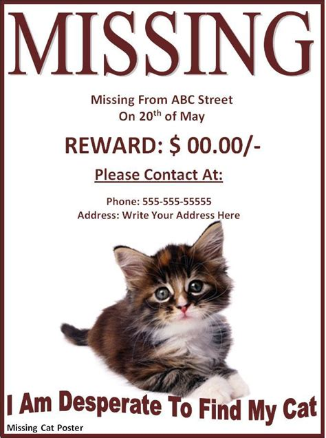 lost cat poster template missing cat poster template archives templates