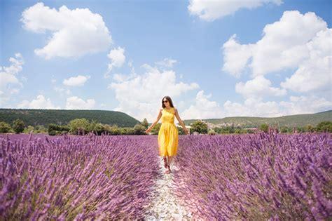 fiori di provenza viaggio in provenza con l occitane lavanda mongolfiere