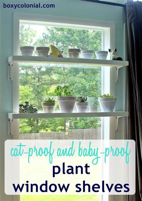 Kitchen Sink Drink - plant shelves on pinterest plant ledge decorating decorating ledges and plant ledge