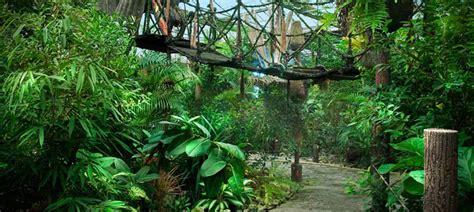Birds Home Decor Rainforest Theme Restaurant In Muscat The Jungle
