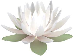 white lotus therapy welcome to white lotus healing arts healing
