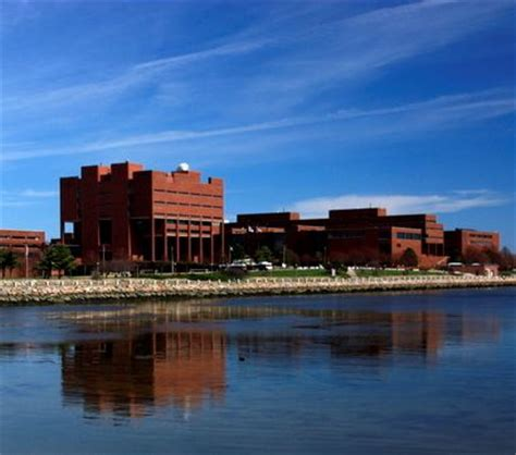Umass Boston Mba Ranking by Umass Boston Admissions And Acceptance Rate