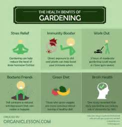 6 wonderful health benefits of gardening