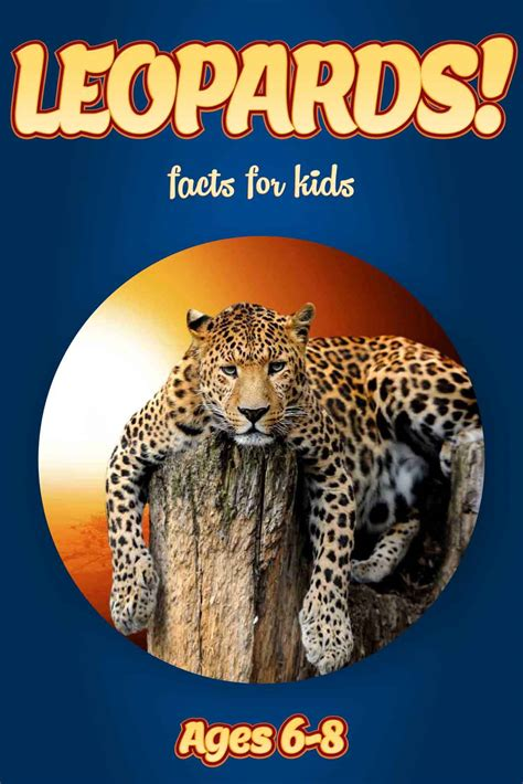 the big book of random facts volume 8 1000 interesting facts and trivia interesting trivia and facts books leoard facts for nonfiction book clouducated