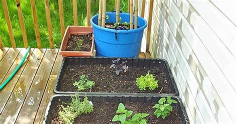 small space container gardens looking beyond the small space container gardening