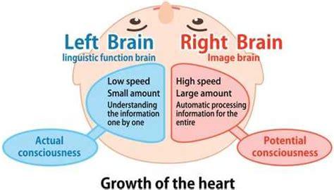 Moment Memory Brain heguru courses programmes right brain