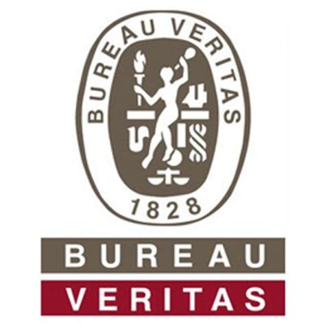 bureau veitas bv business bvbschool