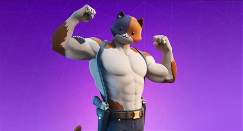 fortnite fans  cosplaying  meowscles  real cats