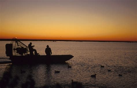 crystal river boat tours air boat tours in homosassa and crystal river