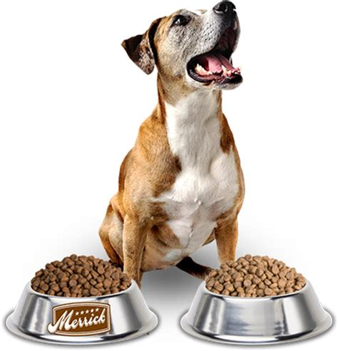 best kibble for dogs home merrick pet care