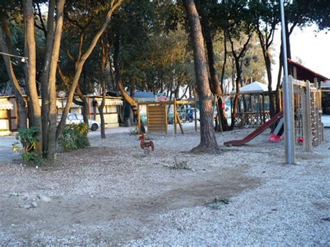 vendita tappeti erbosi parco giochi i giardini di beatrice produzione prato a