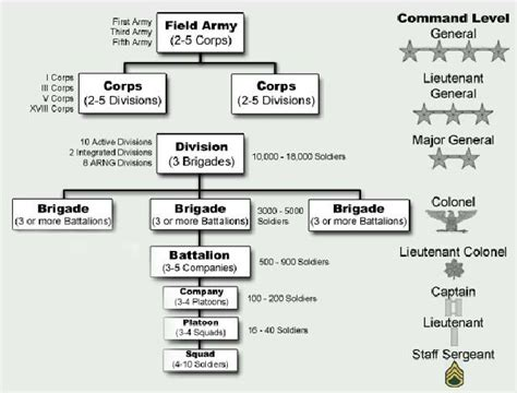navy organization chart supply u s army military organization from squad to corps
