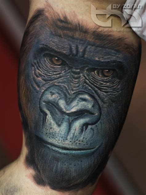 gorilla tattoo designs pin silverback gorillas pictures to pin on