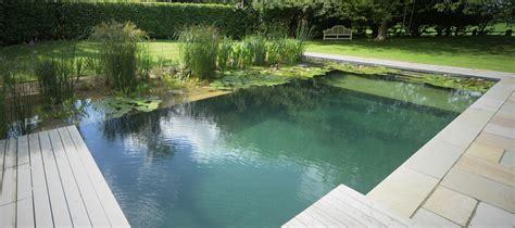 natural swimming pools  chemicals  fun