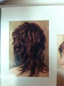 shag hairstyle pictures with v back cut wavy shag haircut back view curly hair pinterest