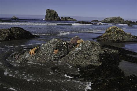 tide brookings oregon rainbow rock retreat about