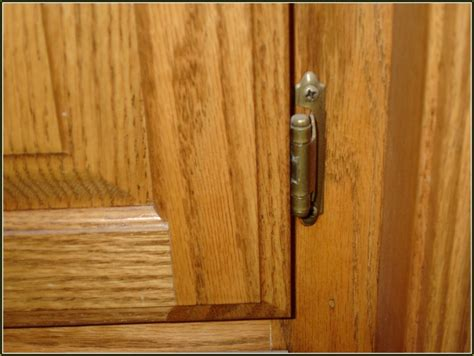 hinge kitchen cabinet doors adjusting hinges for kitchen cabinets home design ideas