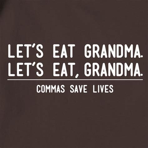 Comma Meme - a grammar lesson from a second grader melissa janda a
