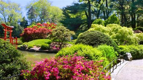 botanical garden top 10 secrets of the botanic garden in nyc