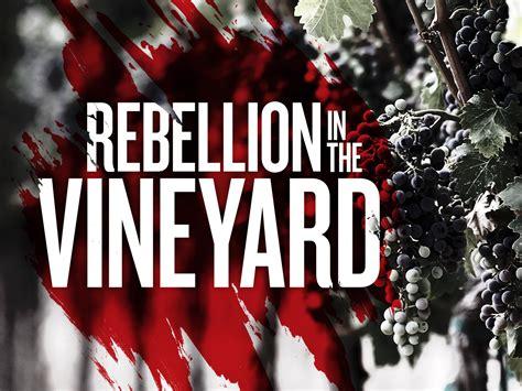 community vineyard church