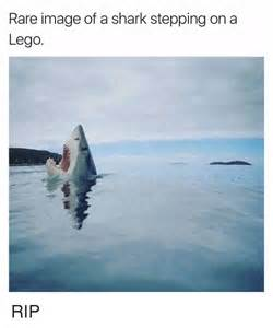 A Picture Of A Image Of A Shark Stepping On A Lego Rip Lego Meme