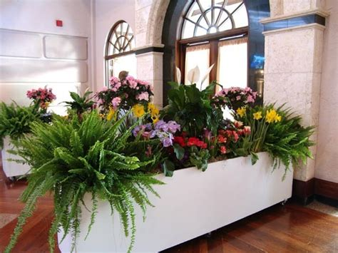 Rolling Planter Boxes by Large Rolling Planter Box Rental Floral Rentals Orlando