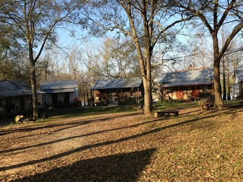 cabins in the morning picture of bayou cabins breaux