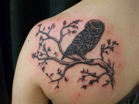 owl tree tattoo designs 50 tree designs for and part 2